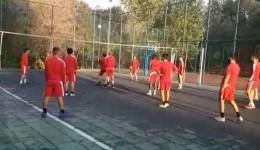 partizani volejboll