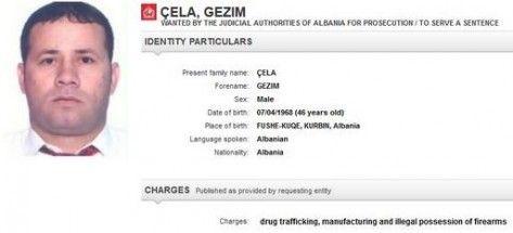 gezimcela-473x215