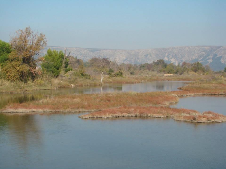 Laguna e Kunes, Apeli: Burg ish-zyrtarëve të Shëngjinit