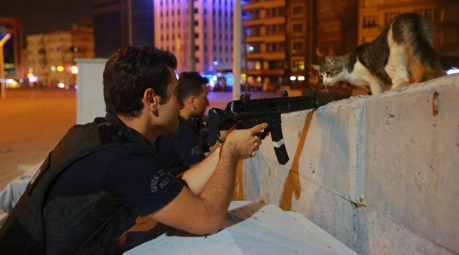 macja ne turqi