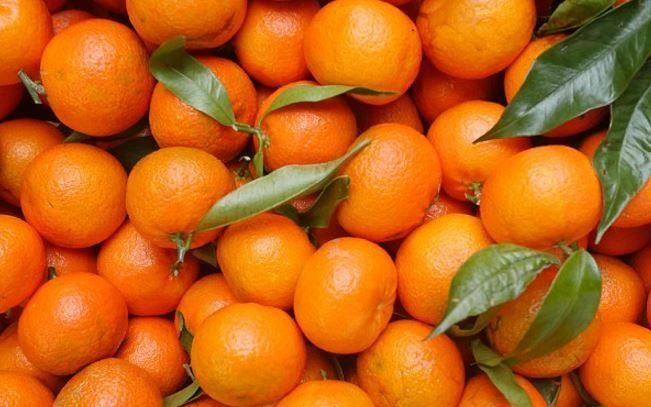 Studim  Dozat e larta të Vitaminës C parandalojnë përhapjen e kancerit në trup