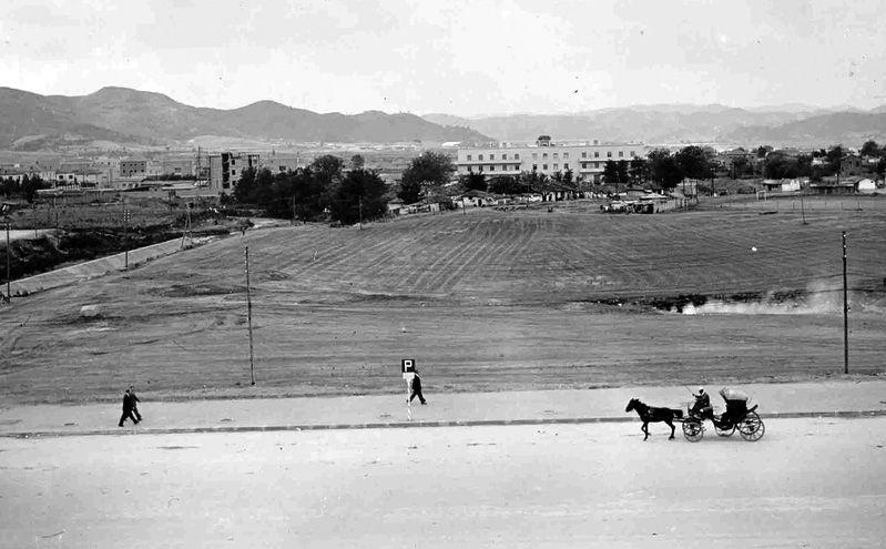 Foto e fushes se Shallvareve ku filloi ndertimi. Ne sfond Pallatet e bardha te ndertuara nga italianet.