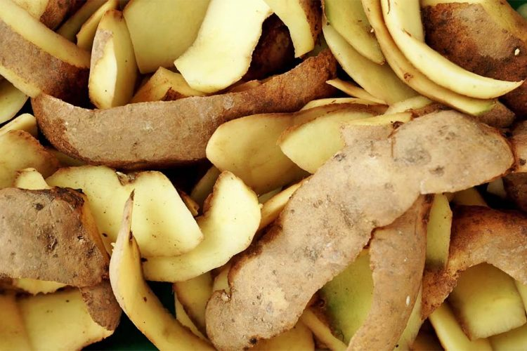 lekura-patate-750x500