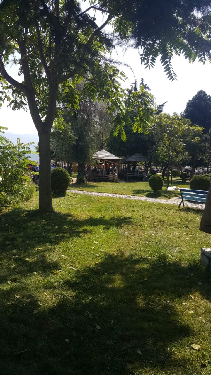 Klubi i dominosë në Pogradec