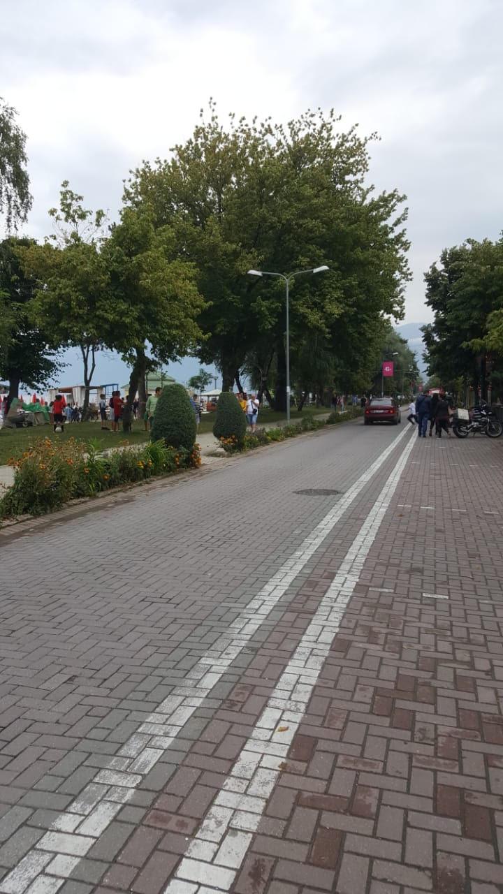 Rrugë me lule në Pogradec