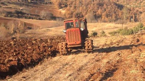 traktor-7