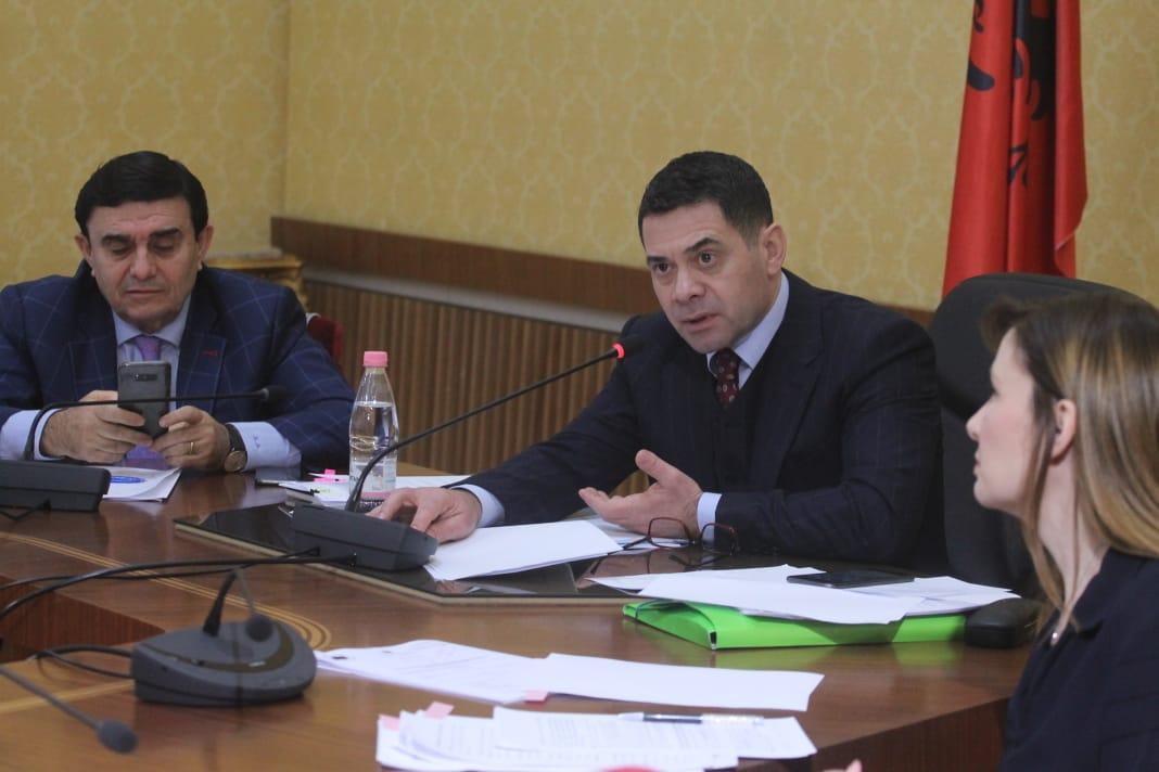 Ahmetaj, komisioni i Ekonomise