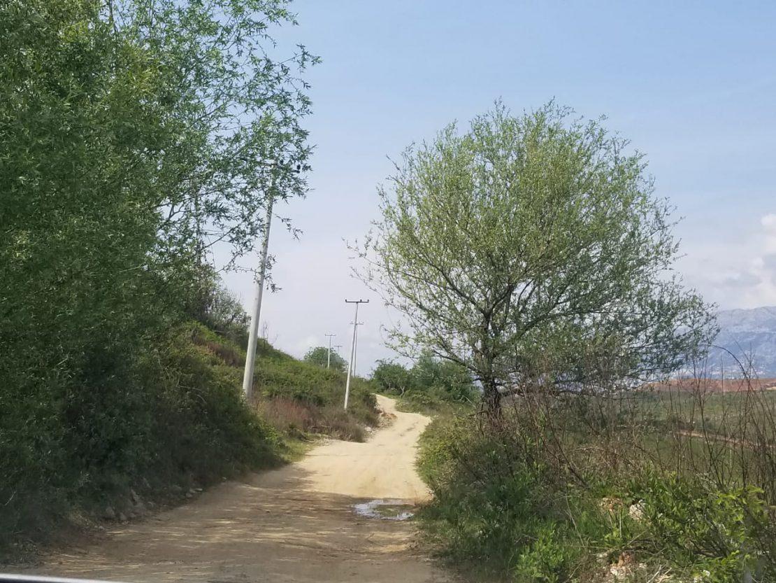 Fshati-Dritas-grabitja-rinas1