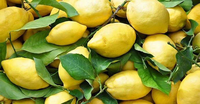 limoni-piano-tumori