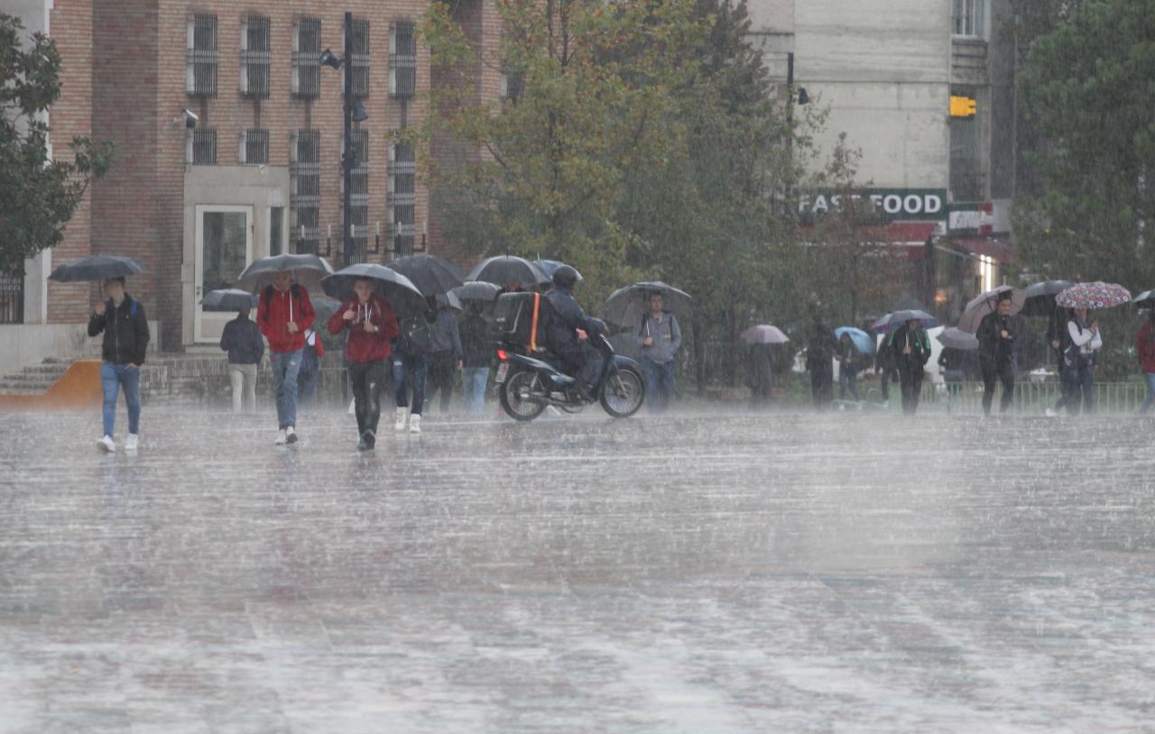 shi ne tirane, moti, reshje