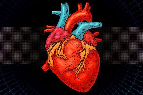 MIT-Biorobotic-Heart-A1