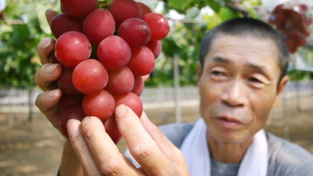 http___cdn.cnn.com_cnnnext_dam_assets_190710101446-japan-ruby-roman-grapes-2
