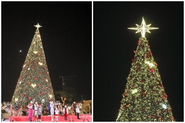 pema e krishtlindjes