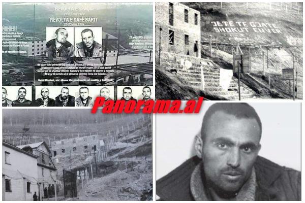 Revolta-Qafes-se-Barit-rrefimi-Bacinovski-haxhi